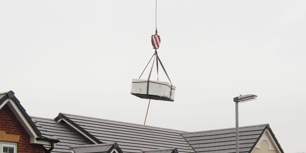 crane+009.jpg